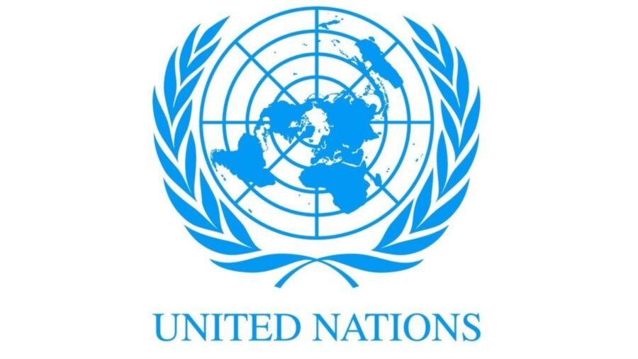 ООН підтримує політику ЛГБТ: тиск на Україну щодо ратифікації Стамбульської конвенції
